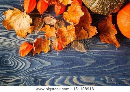 Fall Leaf On Blue Wooden Backgound