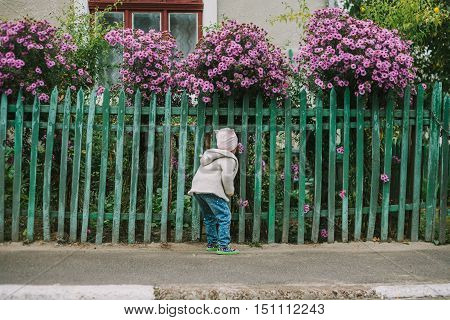 girl sniffs a flower by green fence