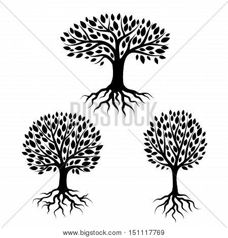 Set of abstract stylized trees with roots and leaves. Natural illustration.
