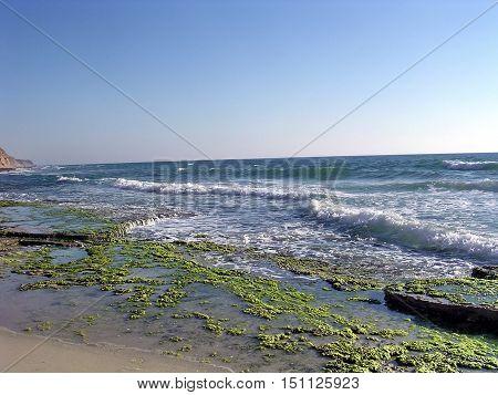 Sshor of the Mediterranean in Shefayim Israel June 21 2006