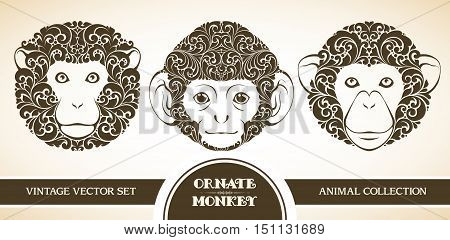 Vector set ornamental decorative monkeys. Monkey patterned head illustration. Animal graphic art. Red monkey - symbol of 2016