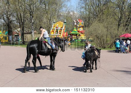 St. Petersburg, Russia - 3 May, People and horses, 3 May, 2016. People and spring landscape in Pavlovsk park.