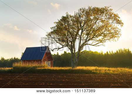 Sunrise over a farm field and little red barn.