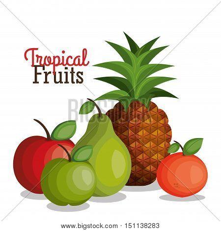 tropical fruits fresh banner vector illustration design