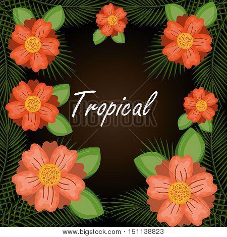 tropical flowers garden background vector illustration design