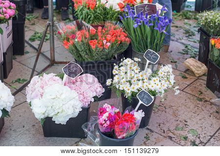 Flowers from Aix-an-Provence market, Provence, France .