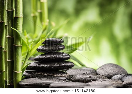 still life with zen basalt stones and bamboo sprout