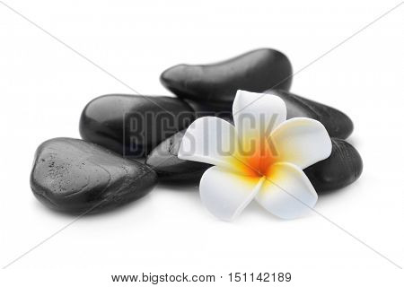 zen basalt stones and Frangipani isolated on white