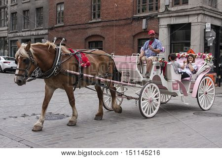 MONTREAL QUEBEC - AUGUST 28, 2016: A horse-drawn carriage transports tourists in Old Montreal