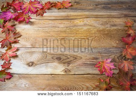 Thanksgiving greeting background with fall maple leaves. Thanksgiving background with seasonal vegetables and fruits. Copy space