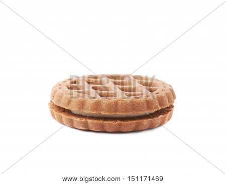 Single of round cookies with the pieces of chocolate isolated over the white background