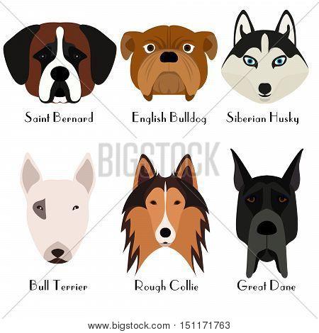 Set of 6 dog's head. Flat design. Pets. Cute doggies. Dog icon. Logo. Cartoon character. Animals. Vector illustration eps10