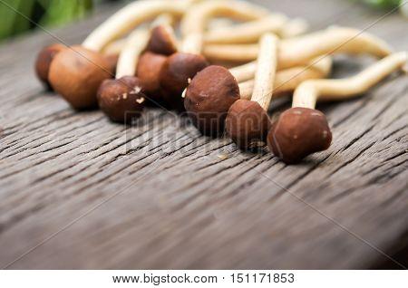 prepare mushroom for cooking, mushroom on wooden table background
