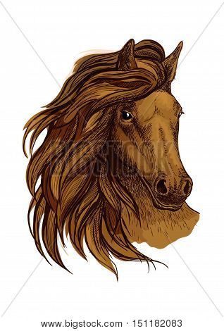 Arabian horse portrait. Brown mustang head with wavy mane strands flying against wind and shining proud eyes