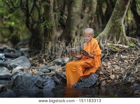 Novice reading a book in the streams