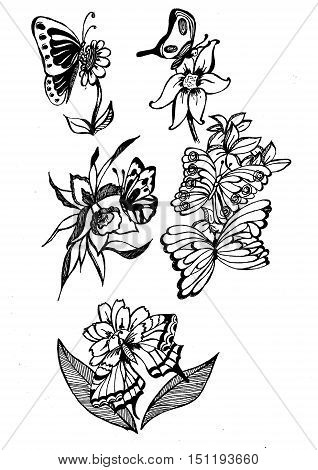 flowers on meadow, black contour on a white background