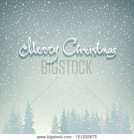 Snowfall in the Forest, Snow Falls on the Spruces and Text Merry Christma,s Fir Trees in Winter in Snowfall, Winter Background, Christmas Winter Landscape in Gray Shades, Vector Illustration