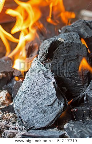 Coal And Fire. Burning Fire Bright Flames. Hot Charcoal Briquettes.