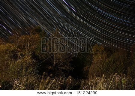 autumn night meteor shower, Novgorod region, Russia