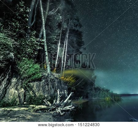 fabulous night forest landscape on the bank under a sky with stars