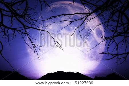 3D render of a Halloween landscape with moon
