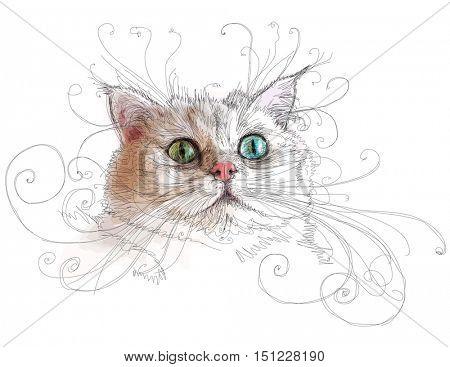 Portrait of attractive cat. Linear vector color illustration
