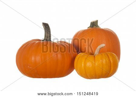 Three Orange Pumpkins Isolated on White Background