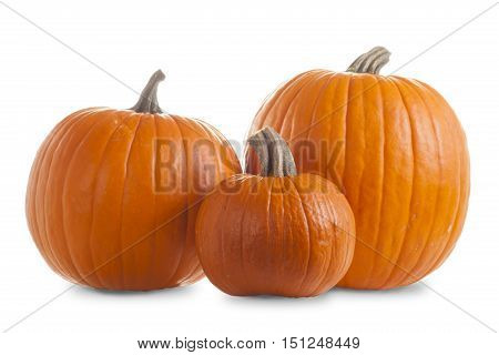 Three Orange Pumpkins Isolated on White Background with Shadows