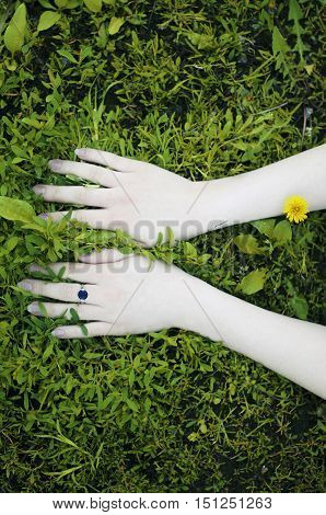 Portrait Of Hands On A Background Of Flowers. Flowers,give,offer. Young Woman's Hands On A Backgroun