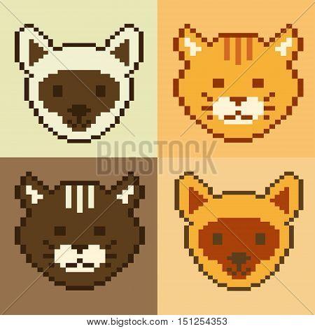 Poster pet face pixel art 8 bit with different color of cat pixel art. Pet vector kitty. Kitten icon illustration. Cartoon pet design.