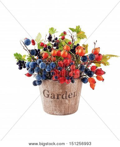 Wild autumn forest berries in a wooden pail isolated