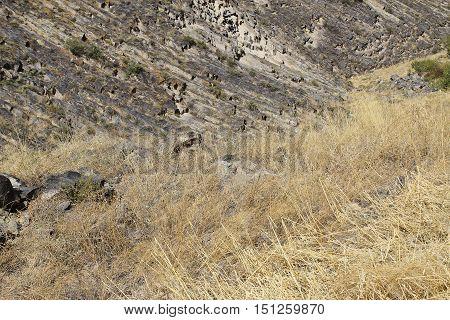 basalt columns in the steppes of Armenia Garni