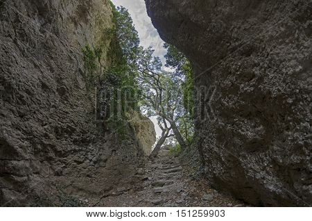 Crimea. View of a narrow gorge. It is believed that the stairs in this gorge is made by the ancient Tauris who lived here at the beginning of the Common Era.