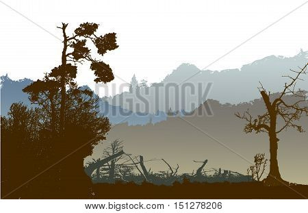 Panoramic nostalgic landscape with mountains, silhouettes of trees and plants. Dark mountain landscape with bare and coniferous tree