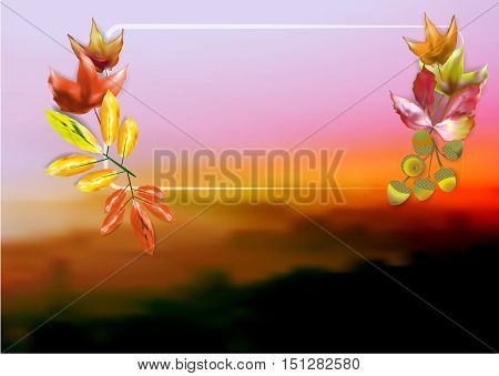 Autumn blurred misty landscape with colorful leaves, acorns and frame. Autumn leaves on a blurred dark background