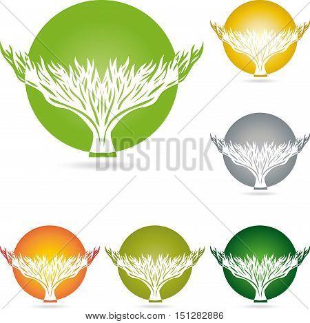 Plant and circle logo, tree, naturopath and nature logo