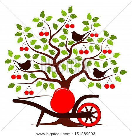 vector cherry tree with birds and hand barrow with one big cherry isolated on white background