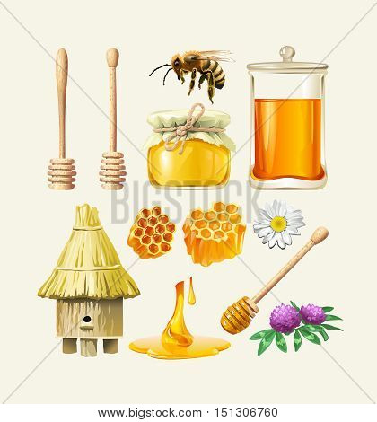 Set of vector honey icons. Bee, honeycomb, a jar of honey, hive