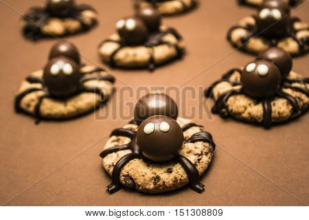 Decorated food still life on a group of chocolate Halloween spider cookies. Biscuit bites