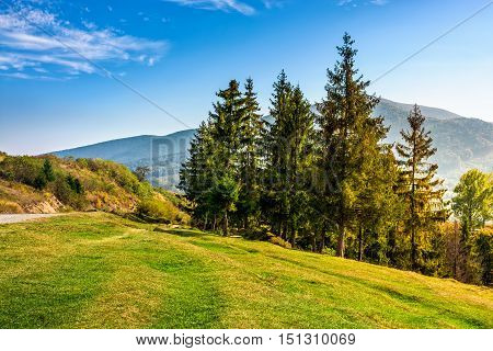 Classic Carpathian Mountain  Landscape In Early Autumn