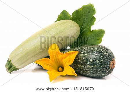 zucchini and squash with flower and leaf isolated on white background.