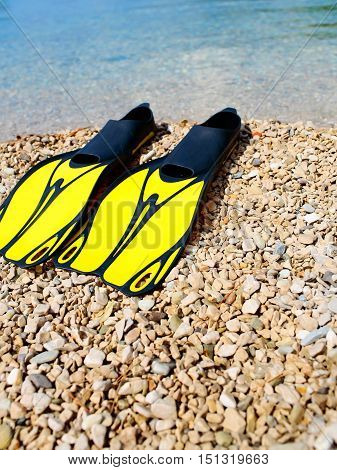 Pair Of Flippers On Beach