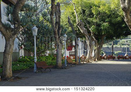 Garden Near The Church San Marcos Of Icod De Los Vinos In The Northwest Of Tenerife In The Spanish C
