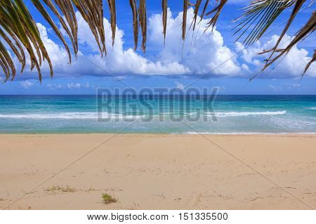 Beautiful Caribbean sea with tan colored sand of Resaca Beach on Isla Culebra with edge of palm frond bordering top of frame