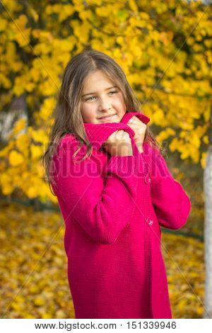 girl brunette with long hair in red sweater in autumn leaves