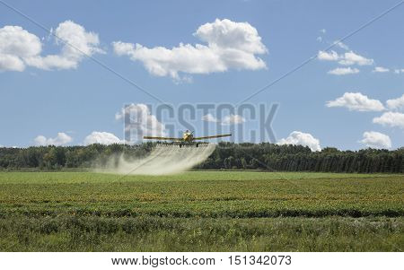 horizontal image of a yellow spray plane flying low over the field spraying the field under a blue sky with clouds.