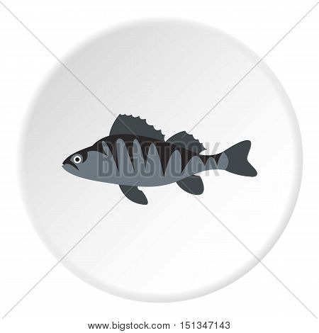 Perch icon. Flat illustration of perch vector icon for web