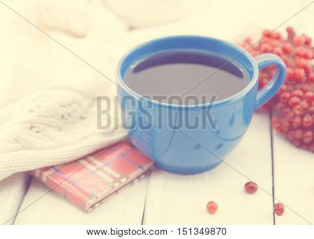 Blue Cup Of A Therapeutic Herbal Tea With Rowan Berry On White Rustic Wooden Table. Alternative Medi