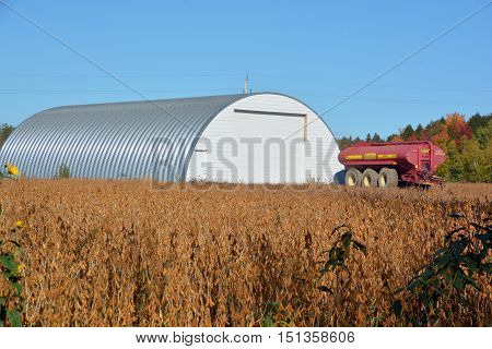 BROMONT QUEBEC CANADA 10 11 2016: Soybean field in front a farm by the UN Food and Agriculture Organization, produces significantly more protein per acre than most other uses of land