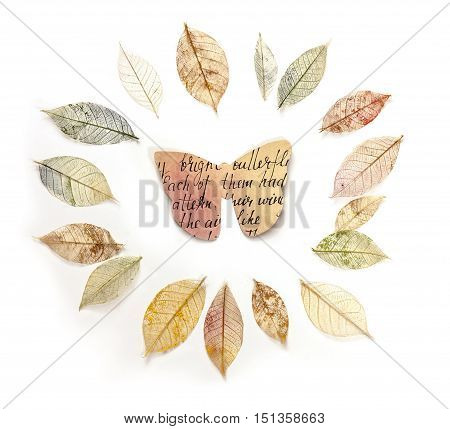 Photo of a paper butterfly in a frame made up by hand painted skeleton leaves, on white. A design for an autumn banner, with copyspace
